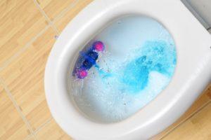 Toilet bowl flushing